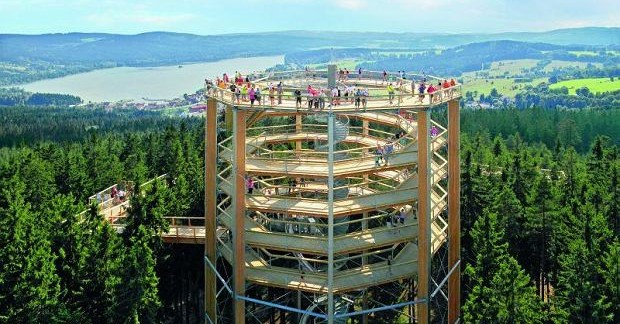 Photo of New Tree-top Forest Trail Set For Karkonosze Mountains